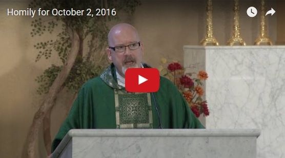 Homily YouTube screenshot